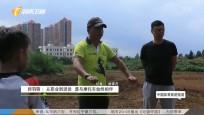 《中國體育旅游報道》2019年08月15日