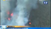 亚马孙雨林大火 六个州向军方发出灭火协助请求