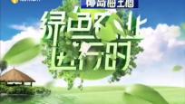 《绿色农业进行时》2019年08月25日