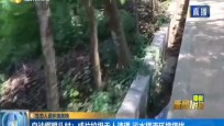 生態人居環境黑榜 白沙榴眼頭村:成片垃圾成堆無人清理 污水橫流環境堪憂