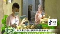 瓊海:依托鰲寶雞特色產業 為貧困戶提供就業