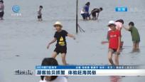游客拾贝抓蟹 体验赶海民俗