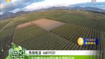 三亚南繁面向全国征集瓜菜新品种
