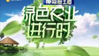 《绿色农业进行时》2019年09月18日