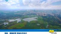 海南:增绿护蓝 坚持生态先行
