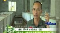屯昌竹狸:合作社提供优质种苗 降低养殖门槛