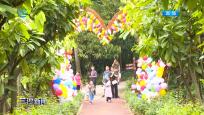 萬寧:首屆可可文化節開幕 促文旅融合創新發展