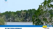 海口建立海湾生态管理体系