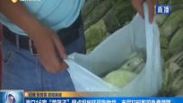 """海口16家""""菜篮子""""网点投放环保购物袋 市民扫码即可免费领取"""