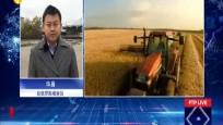 全球自贸连线:俄罗斯提升对华大豆供应量