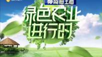 《绿色农业进行时》2019年10月18日