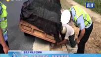 儋州:三轮车陷窘境 路管员来相助