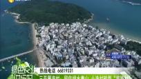 """三亞藤海村:留住綠水青山 小漁村轉型""""旅游村"""""""