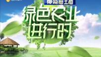 《绿色农业进行时》2019年10月14日