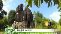 三亞文門村:歷史厚重詩意流淌 千年古寨煥發黎族風情