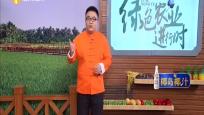 《绿色农业进行时》2019年10月27日