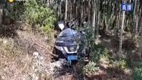 定安:小轿车失控冲出路外 惨剧造成一死两伤