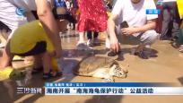 """海南开展""""南海海龟保护行动""""公益活动"""