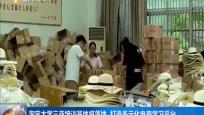 """淘宝大学进海南 如何""""电""""定未来?"""