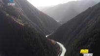 长江源头最大涵水林区森林覆盖率20余年提高近20%