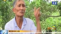 张黑弟:一个人一座坝 孤身守坝40年