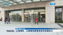 上海浦东:以制度创新激发经济发展动力