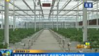 海南冬季瓜菜种植全面展开 相关部门全力做好产销对接