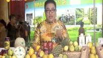 华南贫困地区农产品产销对接 助力农业生产脱贫攻坚