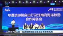 三亚:打造海南国际游艇旅游消费新高地