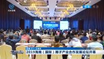 2019海南(国际)椰子产业合作发展论坛开幕