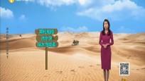 你知道沙土粘合劑嗎?