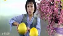 生活妙招:如何选择柚子?