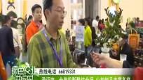 澄迈馆:全息投影酷炫全场 山柚制品丰富多样
