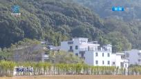 廣州:從化生態設計小鎮吸引全球目光