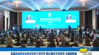 首届中非农业合作论坛在三亚召开 韩长斌作主旨发言 沈晓明致辞