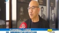 冯伟:海南锻造影视产业链 加速文化产业发展