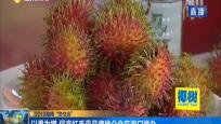 """2019海南""""冬交会"""":以果为媒 保亭红毛丹品牌推介会在海口举办"""
