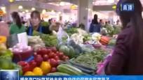 暖冬海口叶菜基地丰收 稳定供应保障市民菜篮子