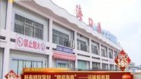"""新春特别策划""""跨阅海南""""——运输服务篇"""