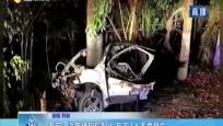 万宁:汽车撞树后起火 车内3人不幸身亡