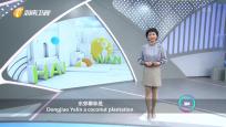《Bravo Hainan》2020年01月01日