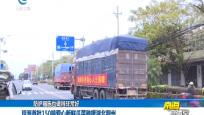 琼海首批150吨爱心新鲜瓜菜驰援湖北荆州