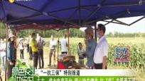 """东方:借力电商平台 暖心助农增收 抗""""疫""""发展两不误"""