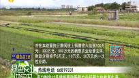 海口制定12条措施帮助新型农业经营主体恢复生产