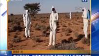 新闻多一点 农业农村部:三方面原因判断沙漠蝗虫迁入我国几率很低