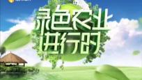 《綠色農業進行時》2020年03月14日