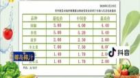 海南冬季瓜果菜在全国各大批发市场批发价格