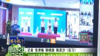 2020年三亚市第一批重大产业项目集中(云)签约仪式举行