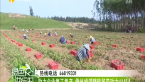 助力企业复工复产 儋州排浦镇转移劳动力4443人
