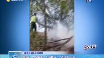 """儋州:交警化身""""消防员"""" 紧急灭山火!"""